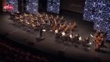 گزارشی از کنسرت شهداد روحانی – جشنواره موسیقی فجر ۳